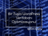 Bir Tuşla WordPress Veritabanı Optimizasyonu!