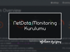 NetData Monitoring Kurulumu