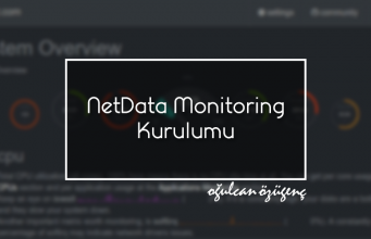 NetData Monitoring Kurulumu